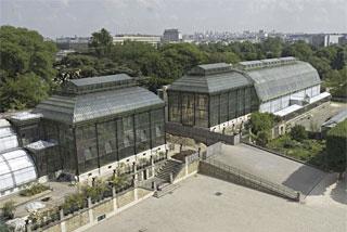Les serres jardin des plantes hominid s for Plantes et jardins serres