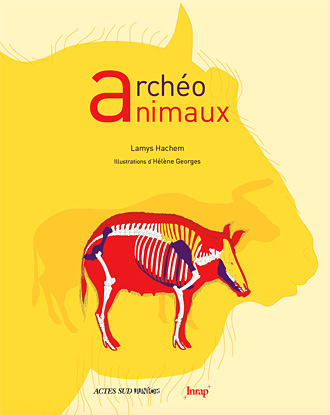 Archéo animaux