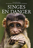 Singes en danger