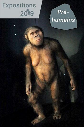 expo-pre-humains-tautavel