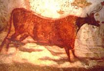 Vache - diverticule axial - Lascaux