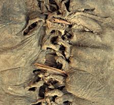 detail des lacets