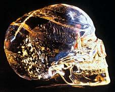Le 13 ème crâne de cristal Crane-cristal-skull-crystal