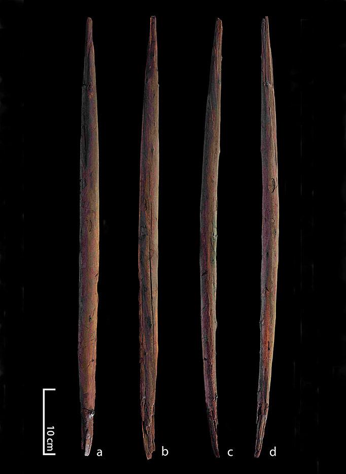 baton-chasse-shoningen-300000-ans