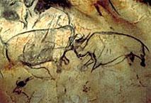 Deux rhinocéros - Grotte Chauvet