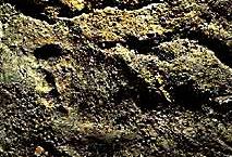 Empreinte pied adolescent - Grotte Chauvet