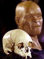 Luzia - Crâne et reconstutution faciale