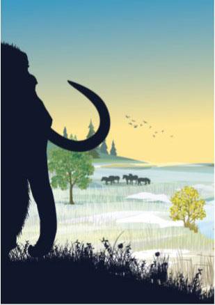 mammouth-feux-de-la-rampe-genetique