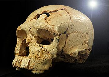 Crâne de la Sima de los Huesos daté par OSL