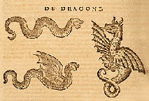Dragons - Livre des serpents - Conrad Gesner