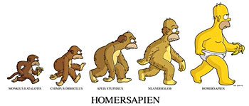 Evolution de l'homme par Omer Simpson