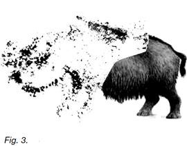 Un nouveau rhinocéros peint dans la grotte de Villars