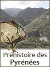 La préhistoire des Pyrénées