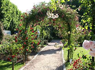 Jardin des plantes paris hominid s for Plante jardin