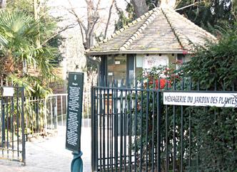 Jardin des plantes paris hominid s - Zoo du jardin des plantes tarifs ...