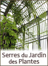 Serres au Jardin des Plantes