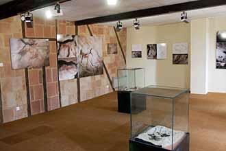 mus e de pr histoire du mas d 39 azil visite images hominid s. Black Bedroom Furniture Sets. Home Design Ideas