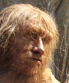 L'homme de Néandertal se soignait-il par les plantes ?