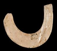 Crochet de pêche de 11 000 ans