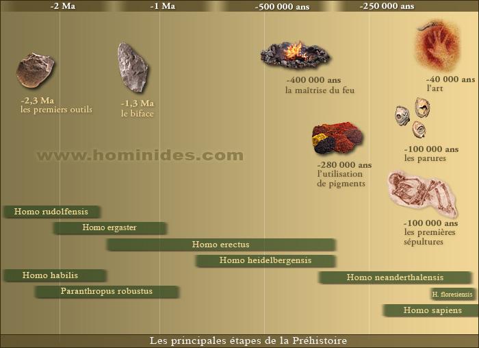 Les avancés de la préhistoire