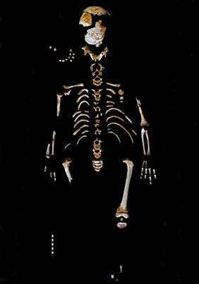squelette-enfant-el-sidron