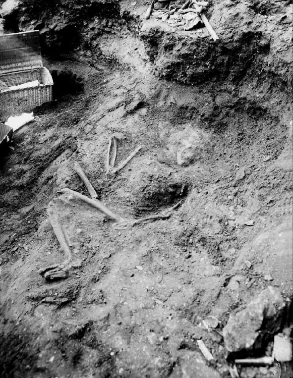 lf1-neandertal-ferrassie