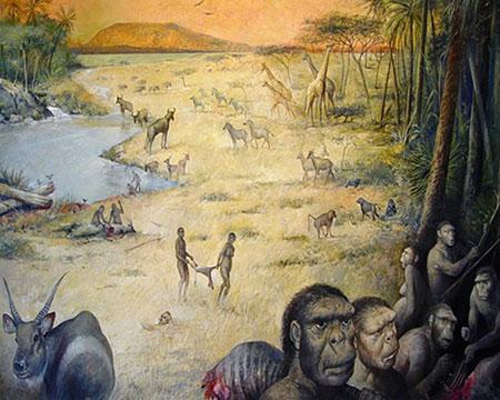 Reconstitution de l'environnement et de la faune d'Olduvai en Tanzanie
