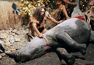Scène reconstituée du dépecage d'un rhinocéros par l'Homme de Tautavel