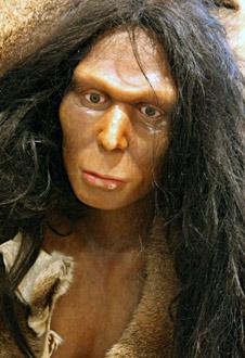 Reconstitution du visage d'Homo erectus