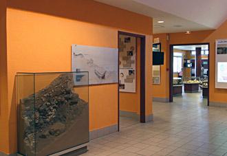 Etudes scientifiques de la grotte - stratigraphie palynologie