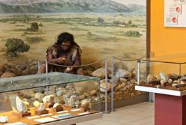 La première salle du Musée de préhistoire de Tautavel