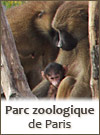 Zoo de Paris - Vincennes